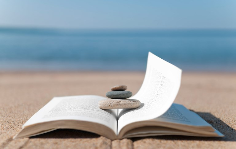 Your 2017 summer reading guide from Ivey faculty