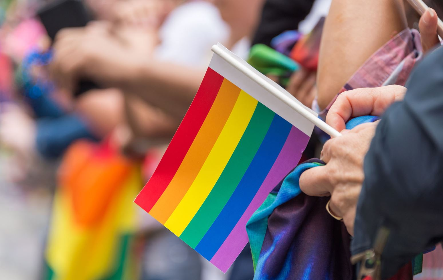 Ivey students will participate in Toronto Pride Parade
