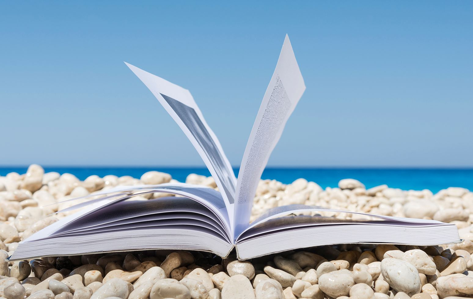 Your summer 2019 business reading guide