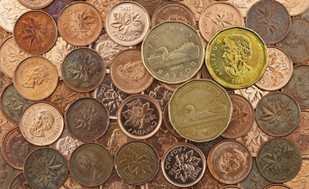 Professor David Sparling explains how Canadians can benefit from the lower loonie