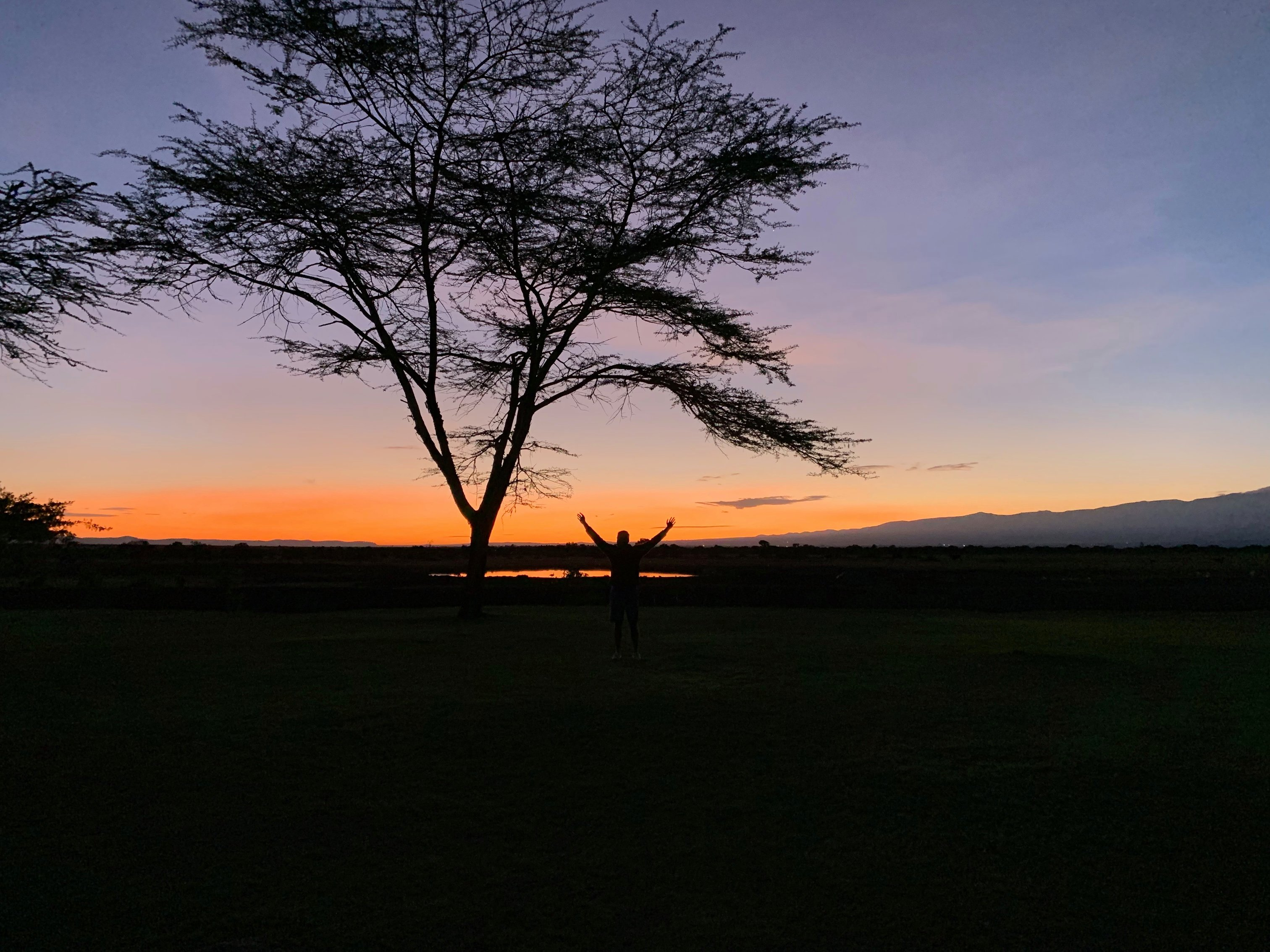 photo of Ol Pejeta during the sunrise